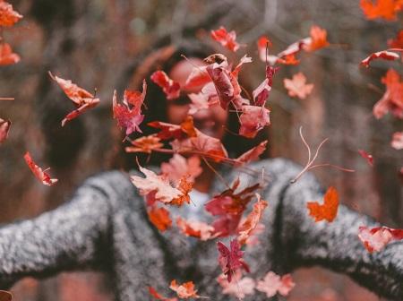 Programmez un week end ressourcement à l'automne